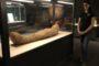 مومياء مصرية في متحف هاليفاكس..!