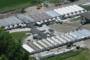اصابة 29 عاملًا في مزرعة mushroom في أونتاريو بفايروس كورونا
