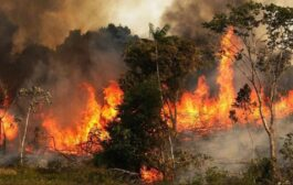 الأوقاف السورية تدعو لصلاة الاستسقاء لرفع بلاء الحرائق