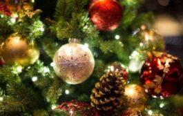 حكاية شجرة الكريسماس وعلاقتها بإلاله المصري رع