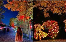 بالصور ... مهرجان الأضواء في شلالات نياغارا يبهر العالم
