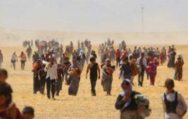 كندا تعتزم استقبال المئات من اللاجئين الأيزيديين العراقيين