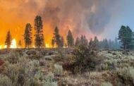 وزارة البيئة الكندية تحذر من انتشار دخان حرائق الغابات في اونتاريو