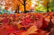 كندا ستشهد موجات حر معتدلة خلال هذا الخريف